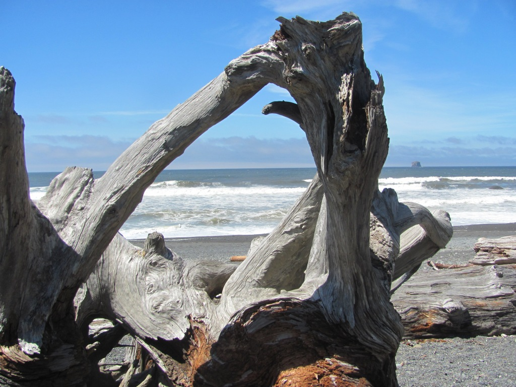 "photos: by me (on top) and by Mrs. Abstract (below) Mrs. Abstract and I visited Rialto Beach,""located only 56 miles west of Port Angeles, Washington, off U.S. Highway 101"", driving through Olympic National Park, after we left Victoria Island and on our way back to Oregon before returning to California. note: the idea of 10 short sentences accompanying a photo(s) comes from Erin Morgenstern, author of The Night Circus, in her blog of flax-golden tales: http://erinmorgenstern.com/flax-golden/"